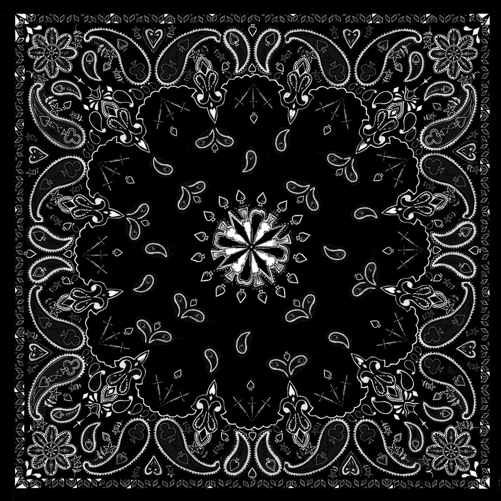 B001 Bandanna Black Paisley Bandanas