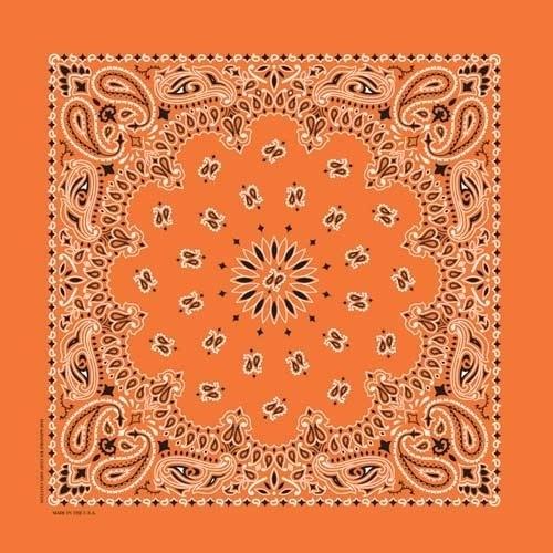NT4404 Bandana Paisley Orange | Bandanas