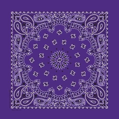 NT4406 Bandana Paisley Purple | Bandanas