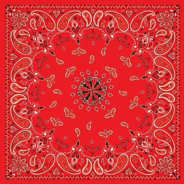 B003- Bandanna Red Paisley | Bandanas