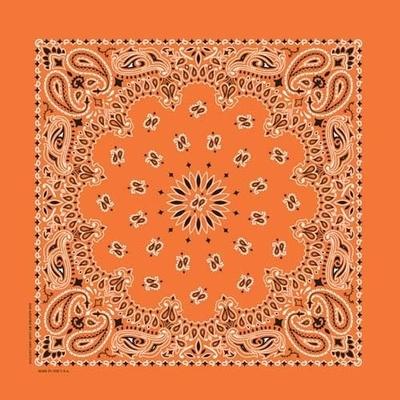 Image NT4404 Bandana Paisley Orange