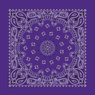 Image NT4406 Bandana Paisley Purple
