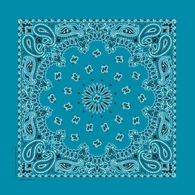 Image NT4412 Bandana Paisley Turquoise