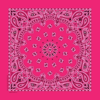 Image NT4413 Bandana Paisley Hot Pink