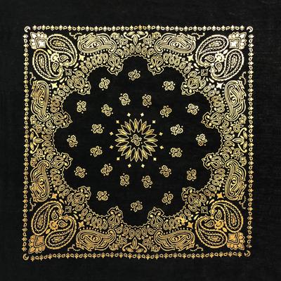 Image BD2520 Black Gold Metalic Paisley