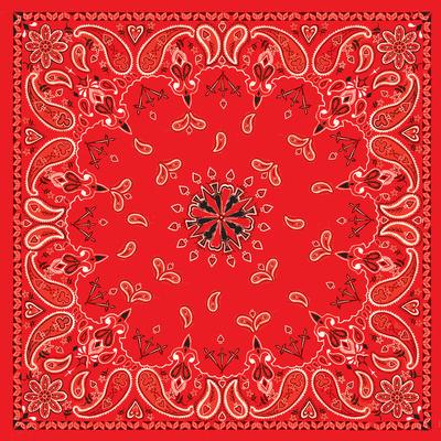 Image B003- Bandanna Red Paisley