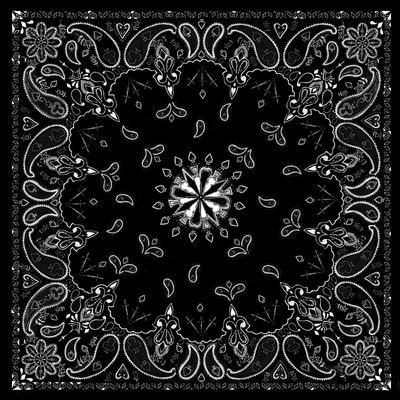 Image B001- Bandanna Black Paisley