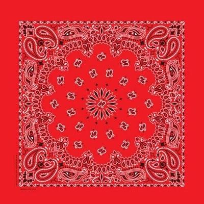 Image BD2500 Bandana Paisley Red