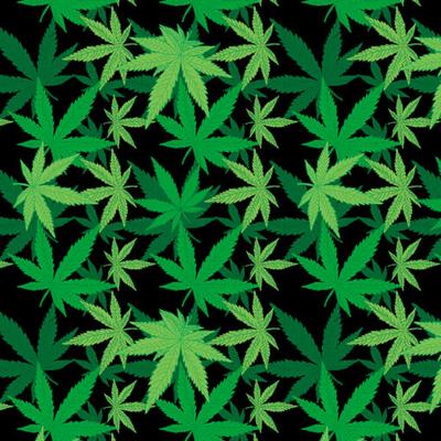Image BD2510 Bandana Cannabis
