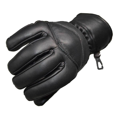 DS25 Cold Weather Insulated Glove